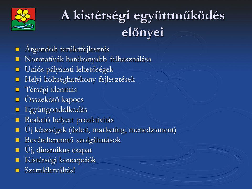 Miénk itt a térség: DPÖTKT 13 település (78.000 lakos, mikrotérségek) 13 település (78.000 lakos, mikrotérségek) Társulási Tanács (elnök, két alelnök) Társulási Tanács (elnök, két alelnök) Munkacsoportok (környezetvédelem, turizmus, stb.) Munkacsoportok (környezetvédelem, turizmus, stb.) Operatív munkaszervezet (kistérségi iroda) Operatív munkaszervezet (kistérségi iroda) Központi project menedzsment csapat Központi project menedzsment csapat Szakági project menedzsment (egészségügy, közoktatás, turizmus, gazdaságfejlesztés, stb.) Szakági project menedzsment (egészségügy, közoktatás, turizmus, gazdaságfejlesztés, stb.) Önkormányzati segítség (pályázatok, közbeszerzés) Önkormányzati segítség (pályázatok, közbeszerzés) Önkormányzati referensek Önkormányzati referensek