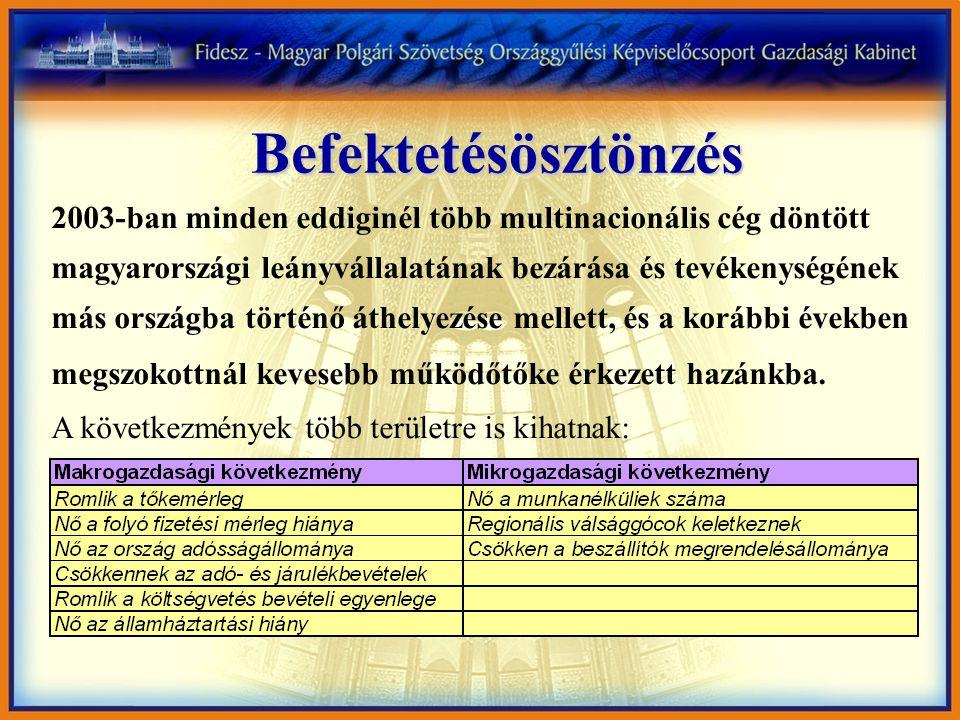 Befektetésösztönzés 2003-ban minden eddiginél több multinacionális cég döntött magyarországi leányvállalatának bezárása és tevékenységének más országba történő áthelyezése mellett, és a korábbi években megszokottnál kevesebb működőtőke érkezett hazánkba.