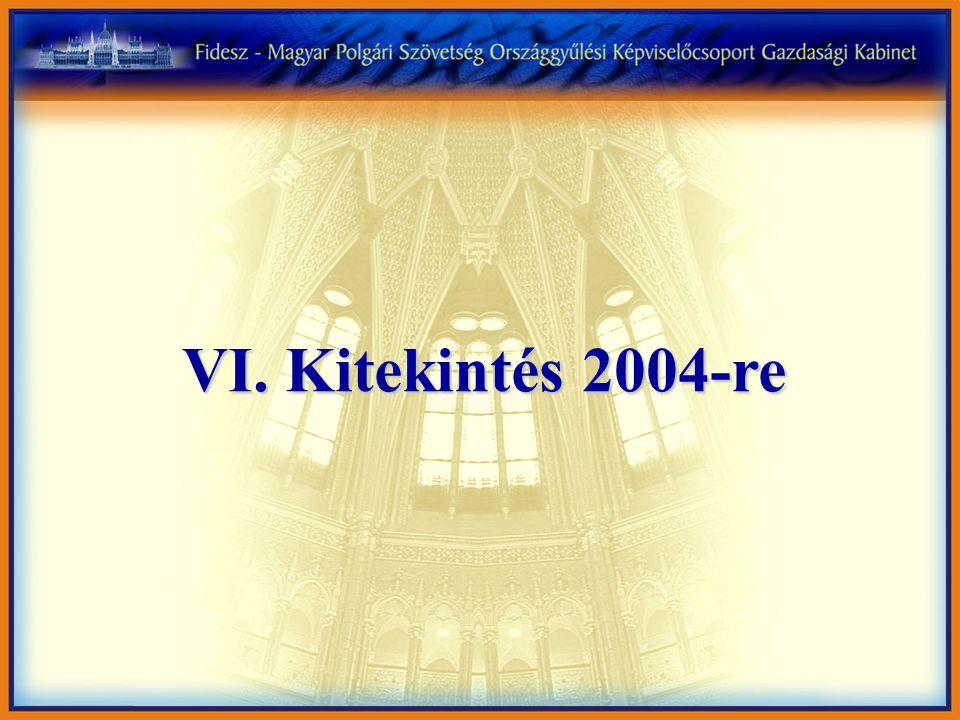 VI. Kitekintés 2004-re