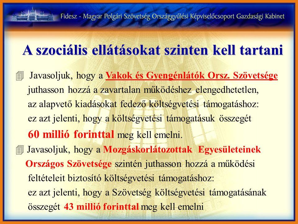 A szociális ellátásokat szinten kell tartani 4 Javasoljuk, hogy a Vakok és Gyengénlátók Orsz.