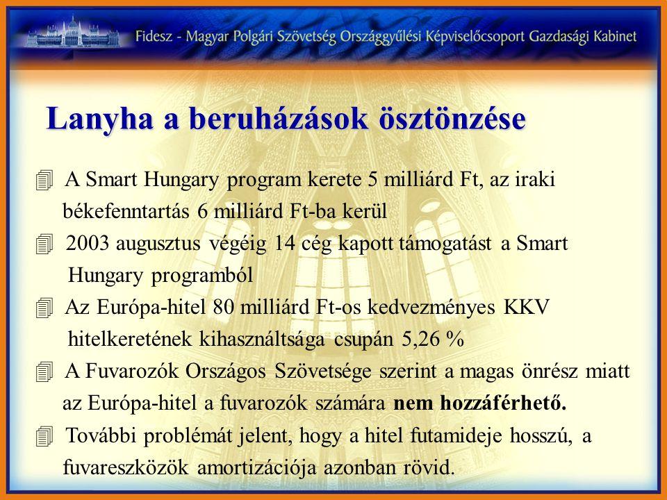Lanyha a beruházások ösztönzése 4 A Smart Hungary program kerete 5 milliárd Ft, az iraki békefenntartás 6 milliárd Ft-ba kerül 4 2003 augusztus végéig 14 cég kapott támogatást a Smart Hungary programból 4 Az Európa-hitel 80 milliárd Ft-os kedvezményes KKV hitelkeretének kihasználtsága csupán 5,26 % 4 A Fuvarozók Országos Szövetsége szerint a magas önrész miatt az Európa-hitel a fuvarozók számára nem hozzáférhető.