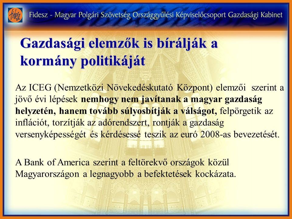 Gazdasági elemzők is bírálják a kormány politikáját Az ICEG (Nemzetközi Növekedéskutató Központ) elemzői szerint a jövő évi lépések nemhogy nem javítanak a magyar gazdaság helyzetén, hanem tovább súlyosbítják a válságot, felpörgetik az inflációt, torzítják az adórendszert, rontják a gazdaság versenyképességét és kérdésessé teszik az euró 2008-as bevezetését.