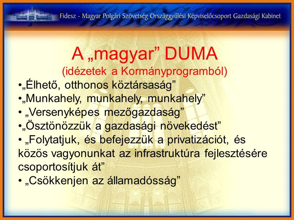 """A """"magyar DUMA (idézetek a Kormányprogramból) """"Élhető, otthonos köztársaság """"Munkahely, munkahely, munkahely """"Versenyképes mezőgazdaság """"Ösztönözzük a gazdasági növekedést """"Folytatjuk, és befejezzük a privatizációt, és közös vagyonunkat az infrastruktúra fejlesztésére csoportosítjuk át """"Csökkenjen az államadósság"""