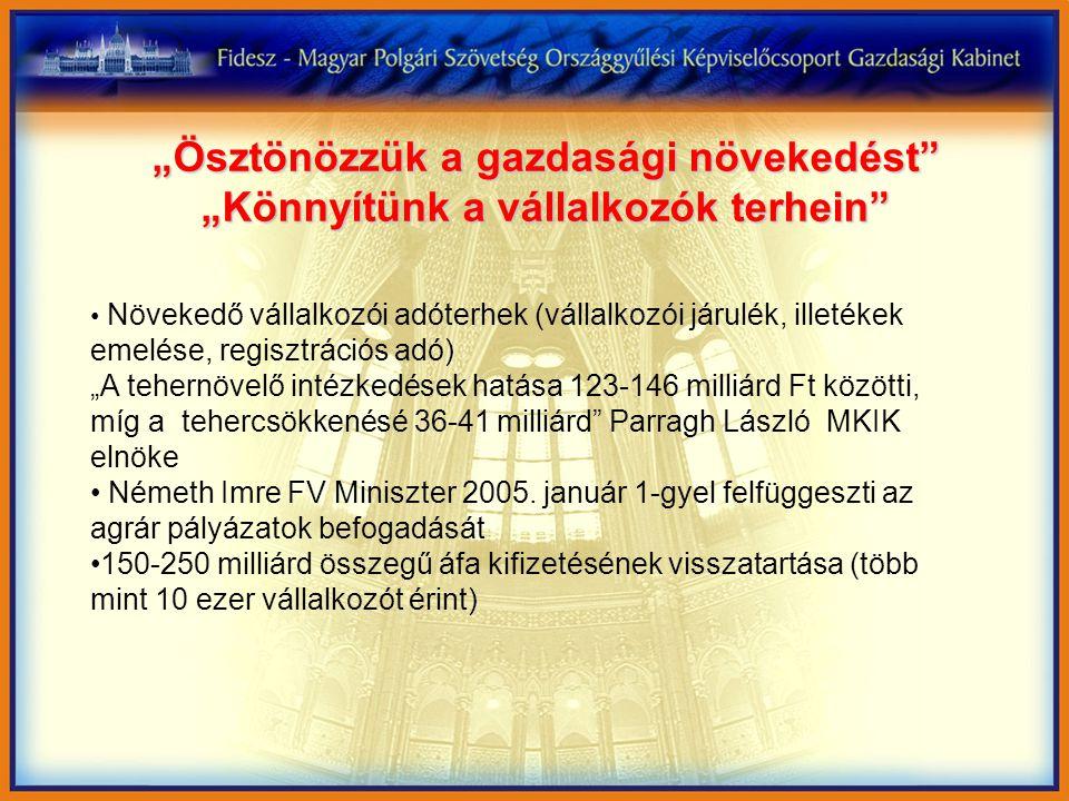 """""""Ösztönözzük a gazdasági növekedést """"Könnyítünk a vállalkozók terhein Növekedő vállalkozói adóterhek (vállalkozói járulék, illetékek emelése, regisztrációs adó) """"A tehernövelő intézkedések hatása 123-146 milliárd Ft közötti, míg a tehercsökkenésé 36-41 milliárd Parragh László MKIK elnöke Németh Imre FV Miniszter 2005."""