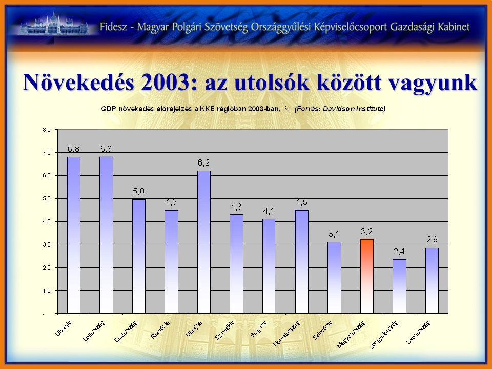 A működőtőke már nem találja vonzónak Magyarországot 4 Magyarország 12 hónap alatt a működőtőke befektetések közkedvelt célpontjából a közép-kelet-európai régió sereghajtójává vált 4 Tavaly már Litvánia is megelőzött minket, holott területe csupán két harmada hazánkénak és 3.6 millió lakosa van 4 Az ország versenyképessége drámai romlást mutat 4 Az élőmunkát terhelő adók és járulékok mértéke kiugróan magas a régió többi országához képest, és tovább növekszik