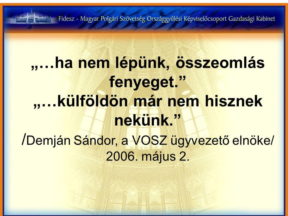"""""""…ha nem lépünk, összeomlás fenyeget. """"…külföldön már nem hisznek nekünk. / Demján Sándor, a VOSZ ügyvezető elnöke/ 2006."""