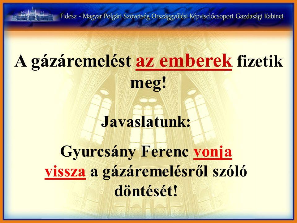 A gázáremelést az emberek fizetik meg! Javaslatunk: Gyurcsány Ferenc vonja vissza a gázáremelésről szóló döntését!