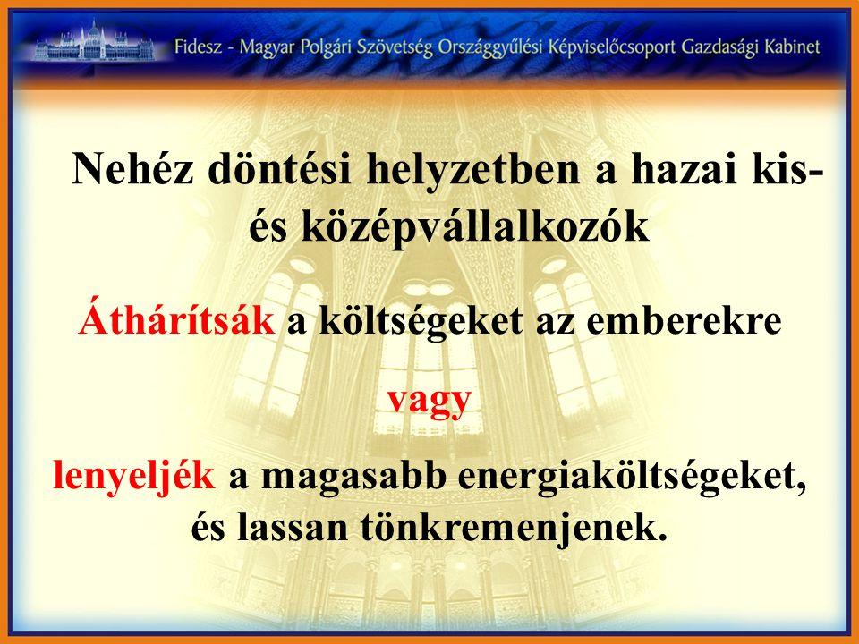 """""""Rettenetesen nehéz helyzetbe kerülnek a pékségek. Ilonka Boldizsár, a Magyar Pékszövetség elnöke /2005."""