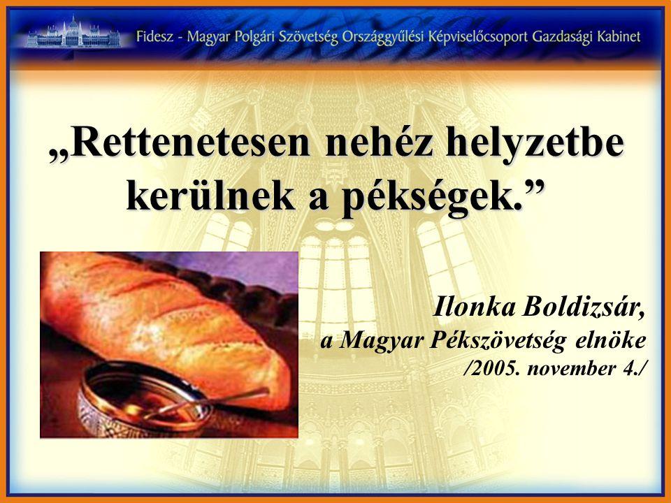"""""""Rettenetesen nehéz helyzetbe kerülnek a pékségek."""" Ilonka Boldizsár, a Magyar Pékszövetség elnöke /2005. november 4./"""
