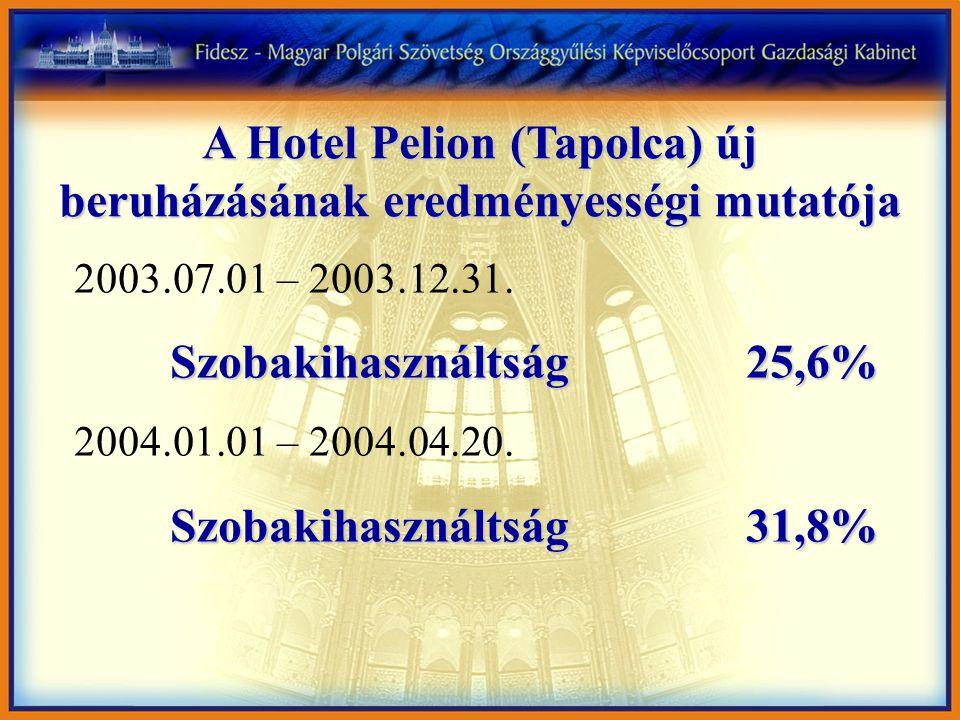 A Hotel Pelion (Tapolca) új beruházásának eredményességi mutatója 2003.07.01 – 2003.12.31.