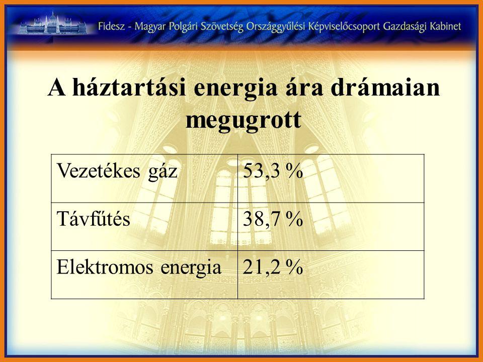 Vezetékes gáz53,3 % Távfűtés38,7 % Elektromos energia21,2 % A háztartási energia ára drámaian megugrott