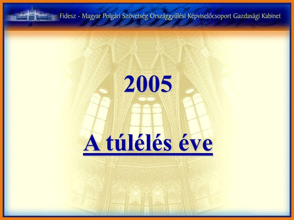 2005 A túlélés éve