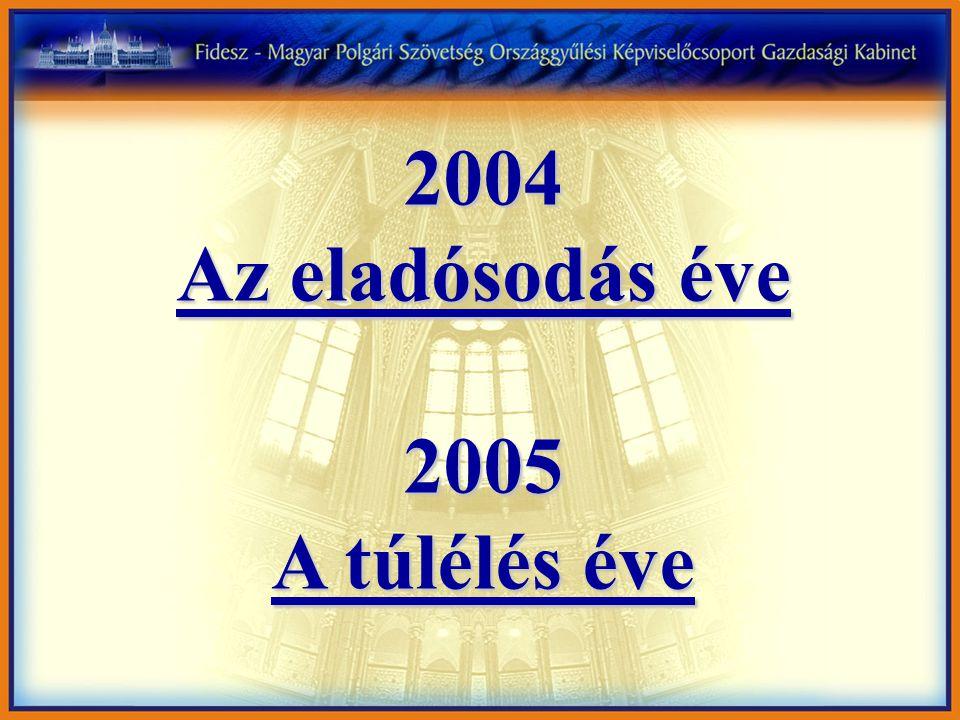 2004 Az eladósodás éve 2005 A túlélés éve
