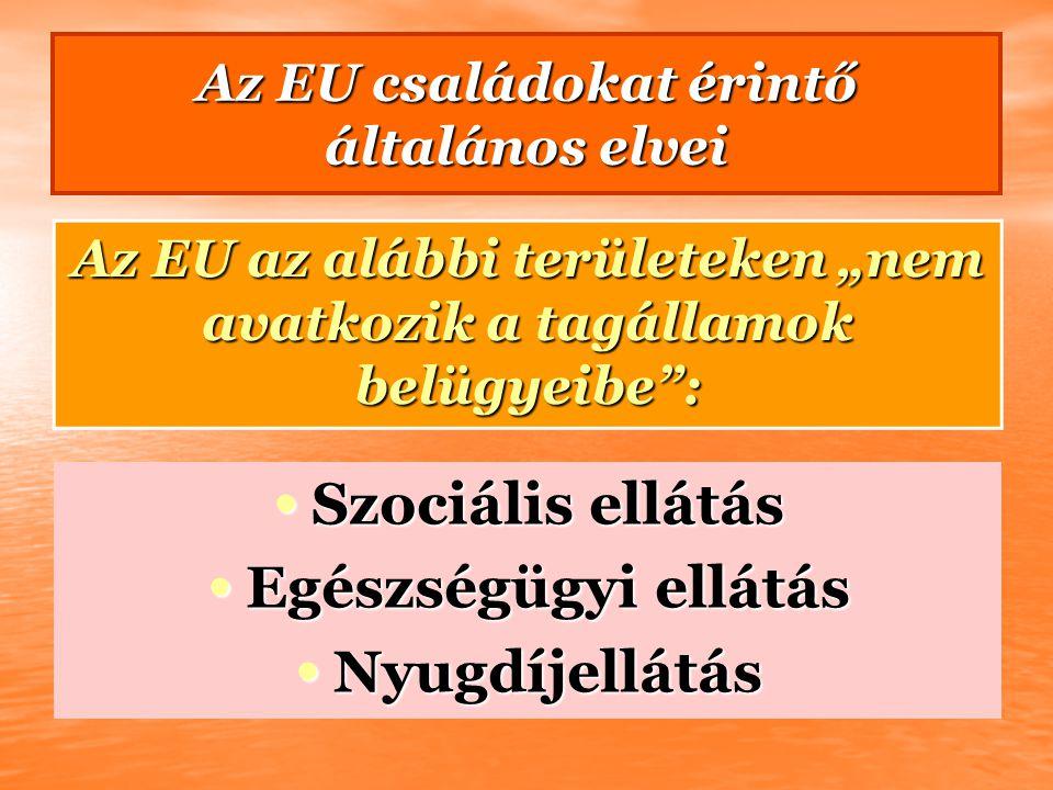 """Az EU családokat érintő általános elvei Az EU az alábbi területeken """"nem avatkozik a tagállamok belügyeibe"""": Szociális ellátás Szociális ellátás Egész"""