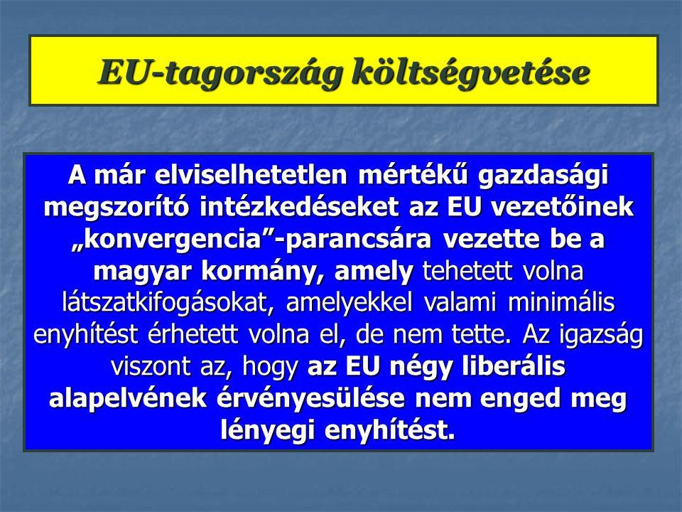 """A már elviselhetetlen mértékű gazdasági megszorító intézkedéseket az EU vezetőinek """"konvergencia""""-parancsára vezette be a magyar kormány, amely tehete"""