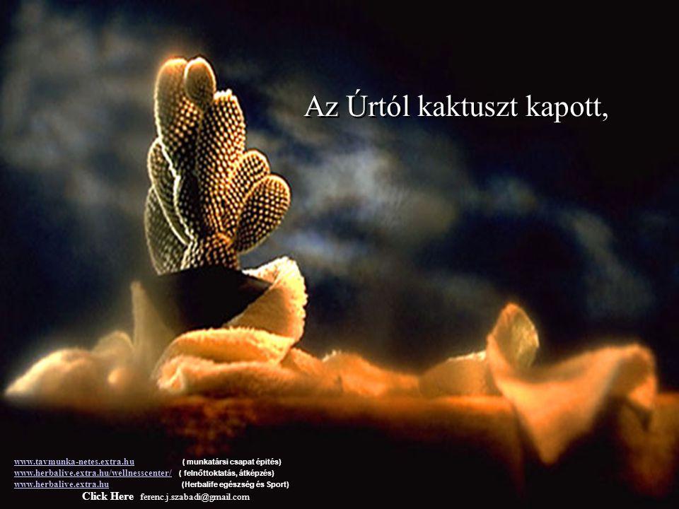 Valamikor régen egy férfi az Úrtól kért egy virágot........és egy pillangót. www.tavmunka-netes.extra.huwww.tavmunka-netes.extra.hu ( munkatársi csapa