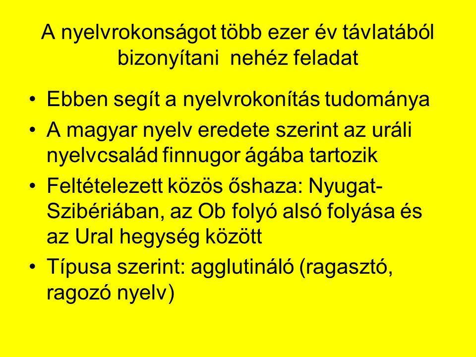 A nyelvrokonságot több ezer év távlatából bizonyítani nehéz feladat Ebben segít a nyelvrokonítás tudománya A magyar nyelv eredete szerint az uráli nyelvcsalád finnugor ágába tartozik Feltételezett közös őshaza: Nyugat- Szibériában, az Ob folyó alsó folyása és az Ural hegység között Típusa szerint: agglutináló (ragasztó, ragozó nyelv)