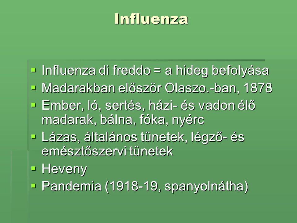 Influenza  Influenza di freddo = a hideg befolyása  Madarakban először Olaszo.-ban, 1878  Ember, ló, sertés, házi- és vadon élő madarak, bálna, fók