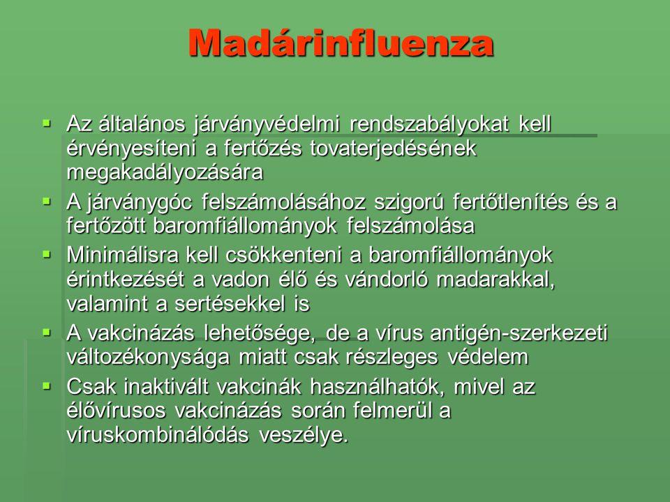 Madárinfluenza  Az általános járványvédelmi rendszabályokat kell érvényesíteni a fertőzés tovaterjedésének megakadályozására  A járványgóc felszámol