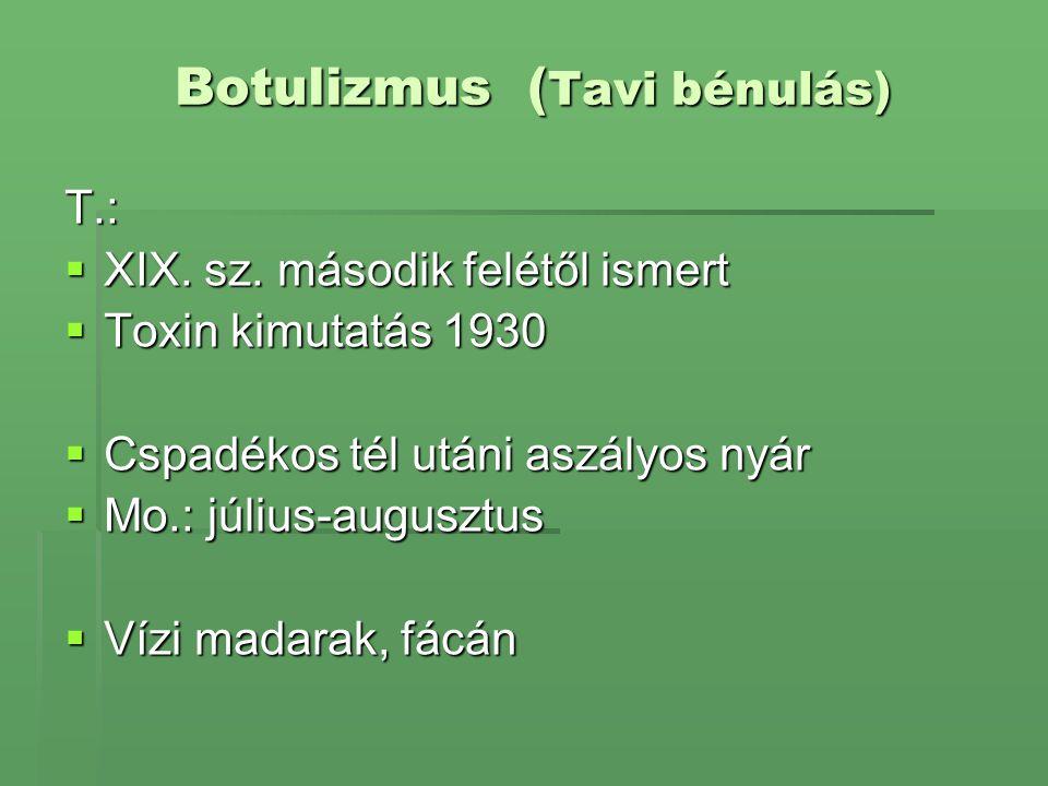 Botulizmus ( Tavi bénulás) T.:  XIX. sz. második felétől ismert  Toxin kimutatás 1930  Cspadékos tél utáni aszályos nyár  Mo.: július-augusztus 