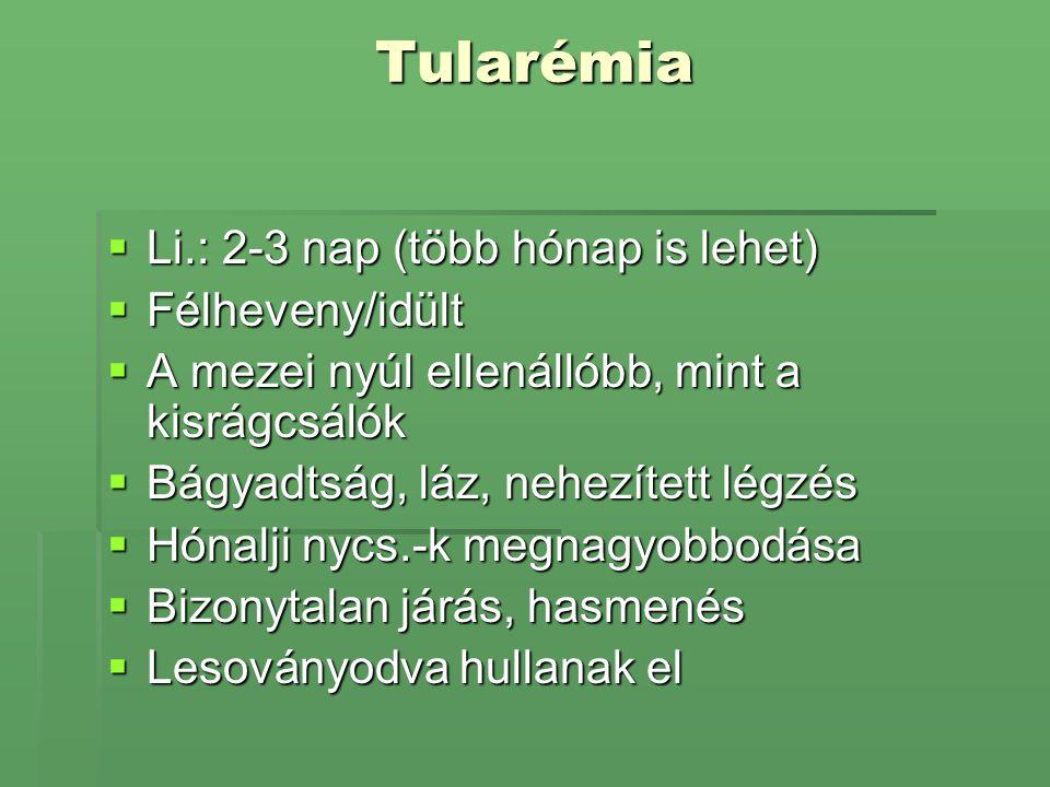 Tularémia  Li.: 2-3 nap (több hónap is lehet)  Félheveny/idült  A mezei nyúl ellenállóbb, mint a kisrágcsálók  Bágyadtság, láz, nehezített légzés