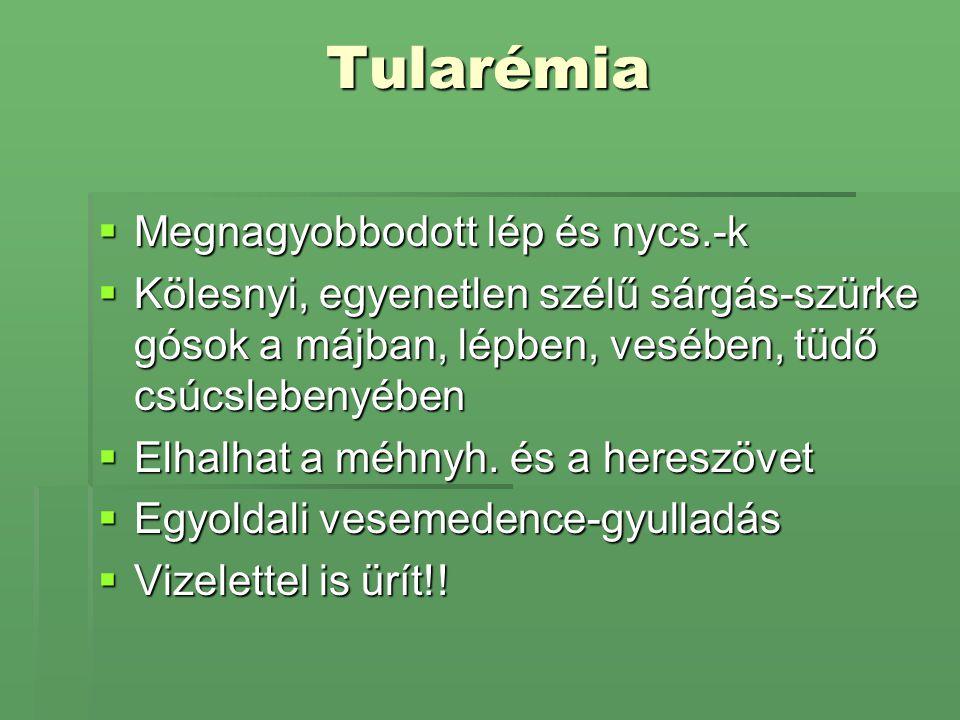 Tularémia  Megnagyobbodott lép és nycs.-k  Kölesnyi, egyenetlen szélű sárgás-szürke gósok a májban, lépben, vesében, tüdő csúcslebenyében  Elhalhat