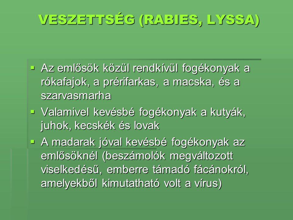 VESZETTSÉG (RABIES, LYSSA)  Az emlősök közül rendkívül fogékonyak a rókafajok, a prérifarkas, a macska, és a szarvasmarha  Valamivel kevésbé fogékon