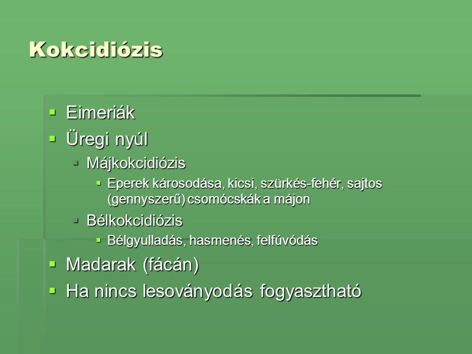 Kokcidiózis  Eimeriák  Üregi nyúl  Májkokcidiózis  Eperek károsodása, kicsi, szürkés-fehér, sajtos (gennyszerű) csomócskák a májon  Bélkokcidiózi