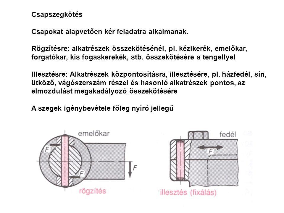 Csapszegkötés Hengerescsap különböző hengeres csapok egymástól a szeg végének alakjában (süllyesztett, kúpos, sima), mérettűrésükben (m6, h8, h11) felületi minőségükben és anyagukban (szerszámacél vagy szerkezeti acél) különböznek