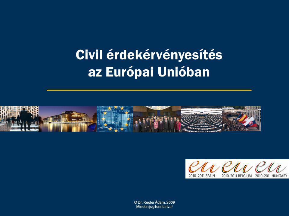 Civil érdekérvényesítés az Európai Unióban © Dr. Kégler Ádám, 2009 Minden jog fenntartva!