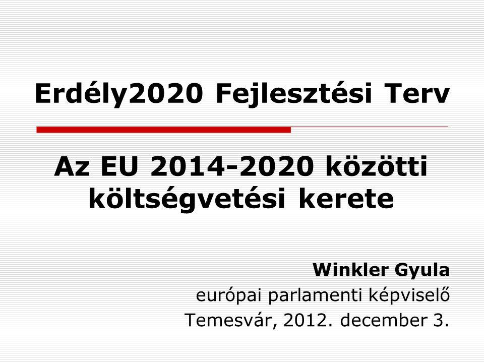 Erdély2020 Fejlesztési Terv Winkler Gyula európai parlamenti képviselő Temesvár, 2012.