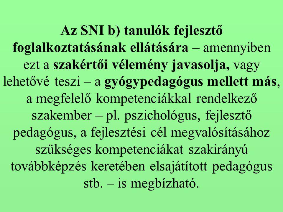Az SNI b) tanulók fejlesztő foglalkoztatásának ellátására – amennyiben ezt a szakértői vélemény javasolja, vagy lehetővé teszi – a gyógypedagógus mell