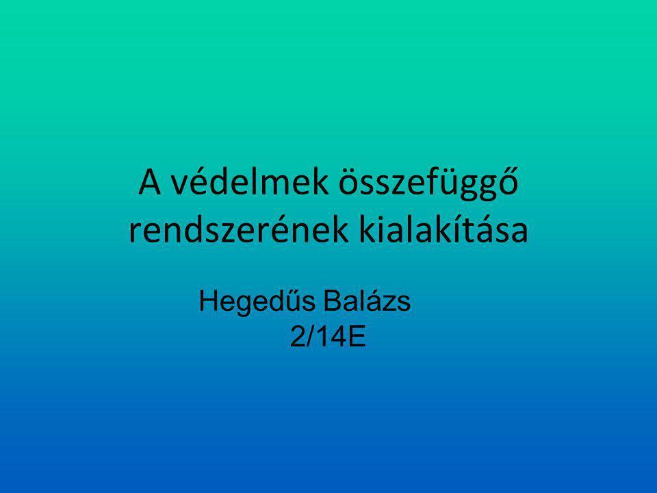 A védelmek összefüggő rendszerének kialakítása Hegedűs Balázs 2/14E