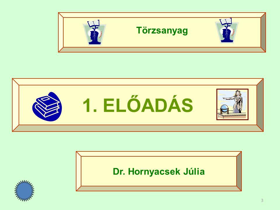 3 1. ELŐADÁS Törzsanyag Dr. Hornyacsek Júlia