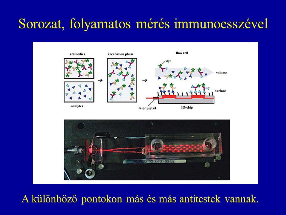 Sorozat, folyamatos mérés immunoesszével A különböző pontokon más és más antitestek vannak.