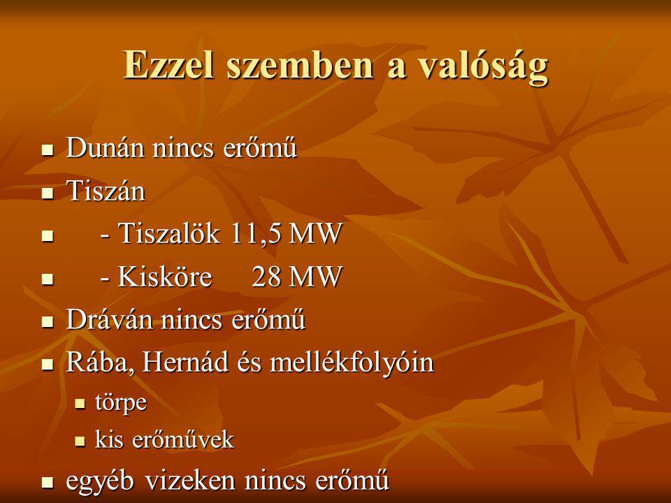 Ezzel szemben a valóság Dunán nincs erőmű Dunán nincs erőmű Tiszán Tiszán - Tiszalök11,5 MW - Tiszalök11,5 MW - Kisköre28 MW - Kisköre28 MW Dráván nin