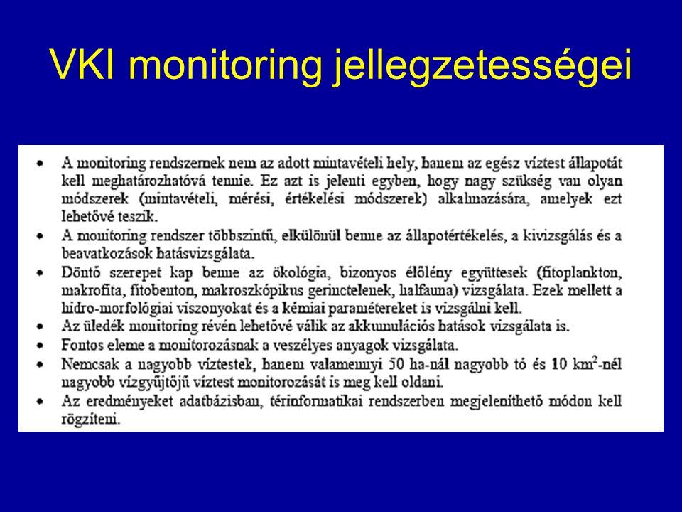 VKI monitoring jellegzetességei