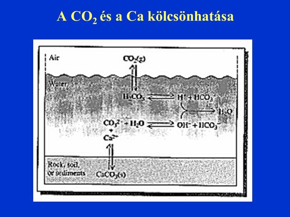 A CO 2 és a Ca kölcsönhatása