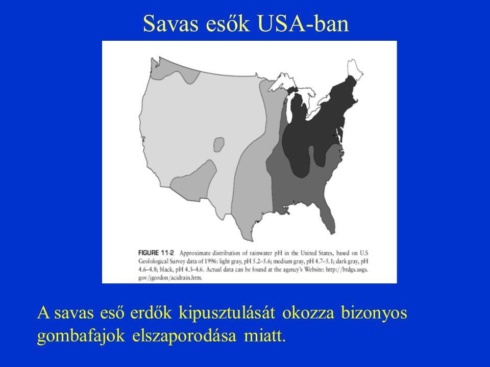 Savas esők USA-ban A savas eső erdők kipusztulását okozza bizonyos gombafajok elszaporodása miatt.