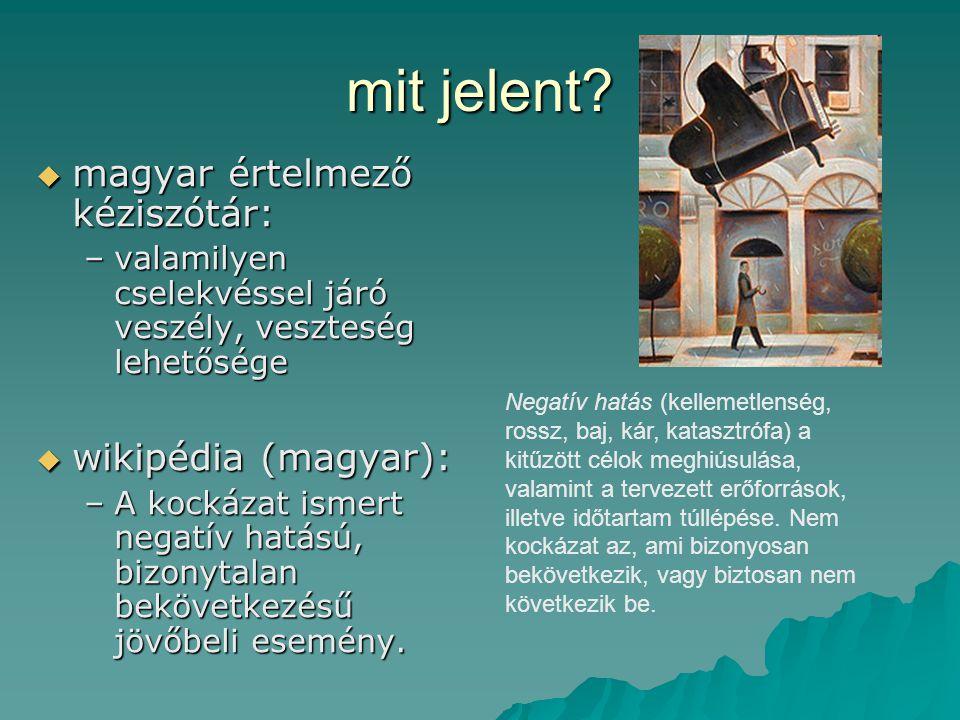 mit jelent?  magyar értelmező kéziszótár: –valamilyen cselekvéssel járó veszély, veszteség lehetősége  wikipédia (magyar): –A kockázat ismert negatí