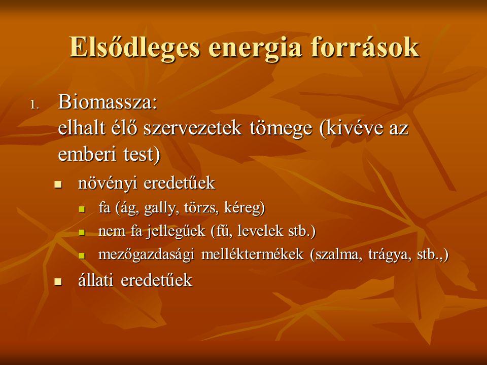Elsődleges energia források 1. Biomassza: elhalt élő szervezetek tömege (kivéve az emberi test) növényi eredetűek növényi eredetűek fa (ág, gally, tör