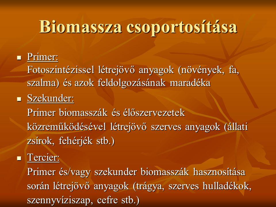 Biomassza csoportosítása Primer: Fotoszintézissel létrejövő anyagok (növények, fa, szalma) és azok feldolgozásának maradéka Primer: Fotoszintézissel l