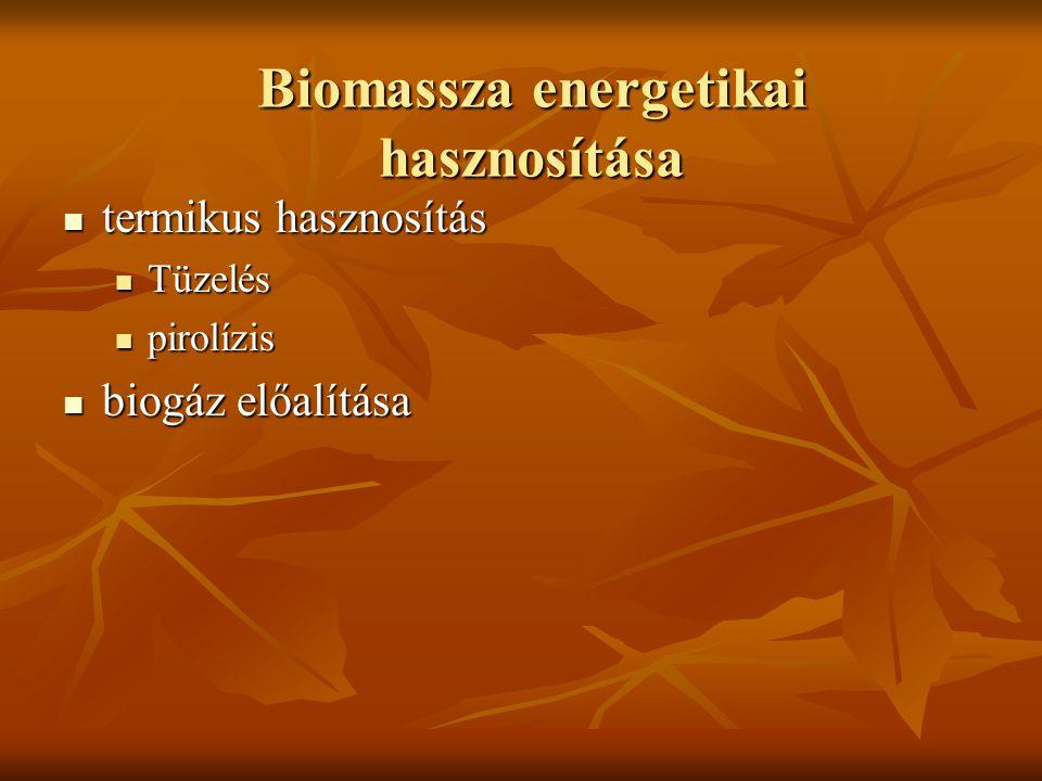 Biomassza energetikai hasznosítása termikus hasznosítás termikus hasznosítás Tüzelés Tüzelés pirolízis pirolízis biogáz előalítása biogáz előalítása