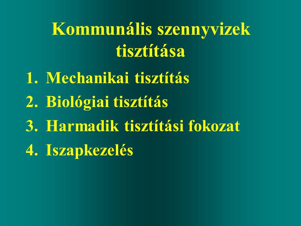 Kommunális szennyvizek tisztítása 1.Mechanikai tisztítás 2.Biológiai tisztítás 3.Harmadik tisztítási fokozat 4.Iszapkezelés