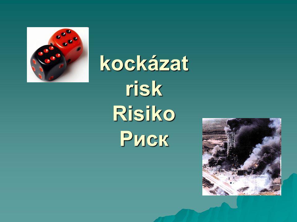 és még kockázatok…  endogén/ exogén  térbeni/ időbeni eloszlás  kontrollálhatóság  a következmények jellege –köznapi, katasztrófális…