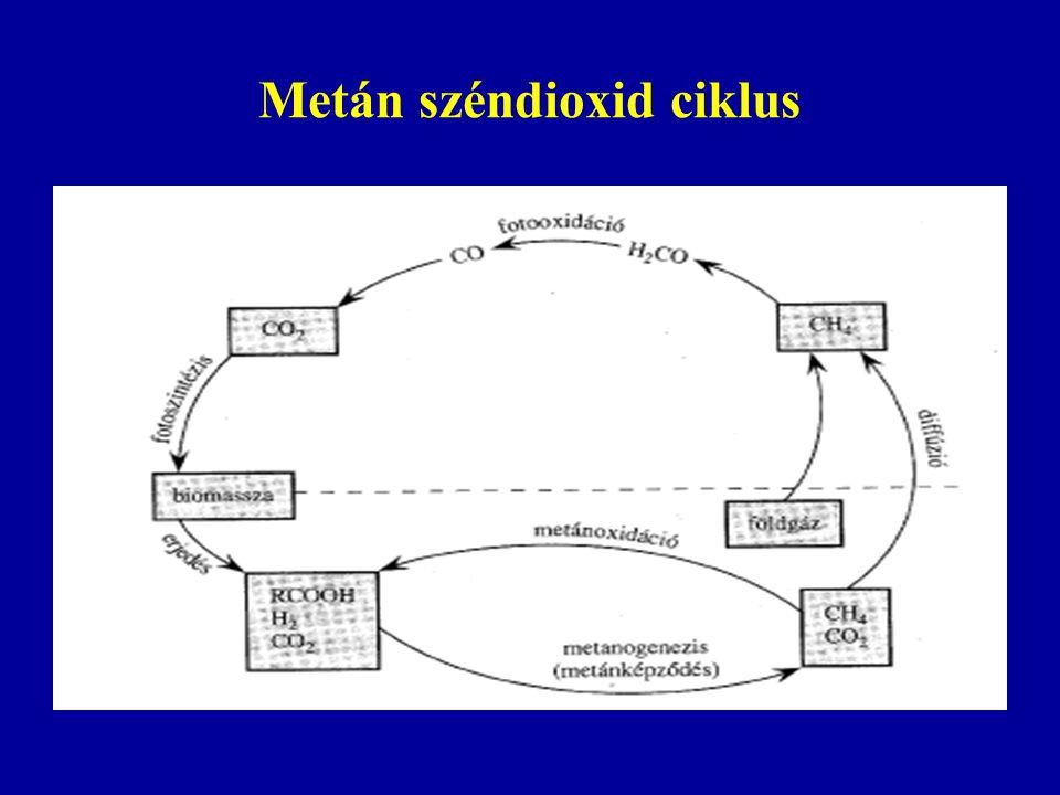 Metán széndioxid ciklus