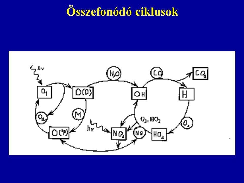 Összefonódó ciklusok
