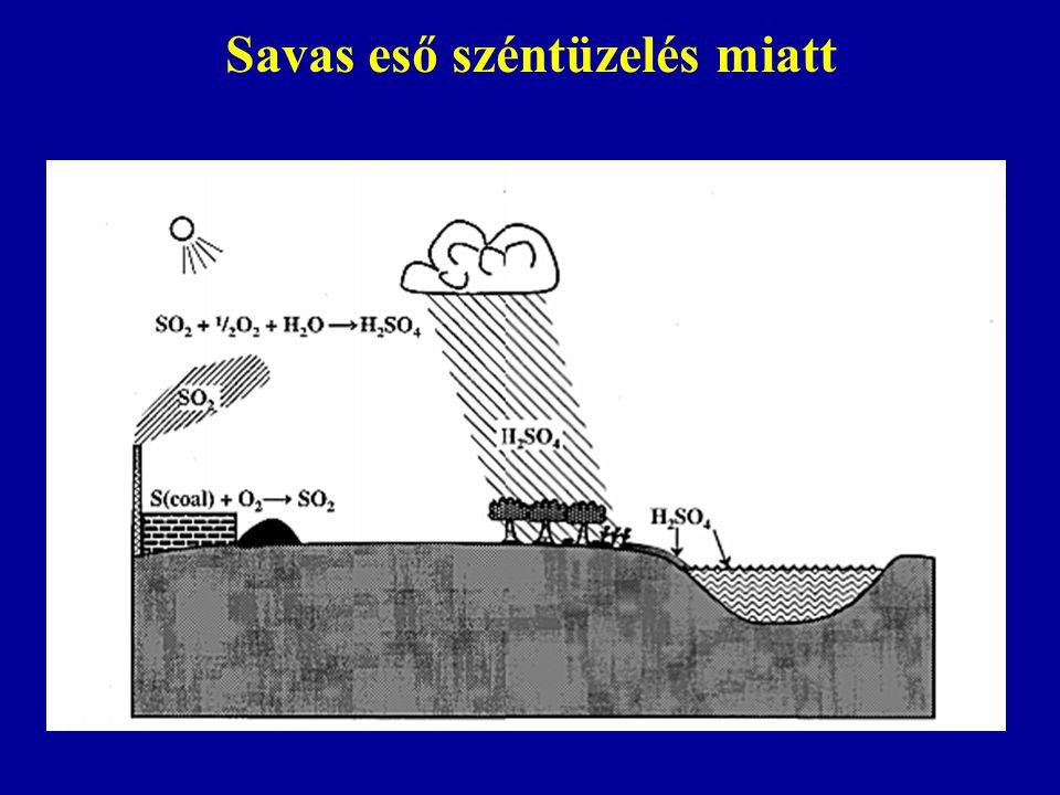 Savas eső széntüzelés miatt