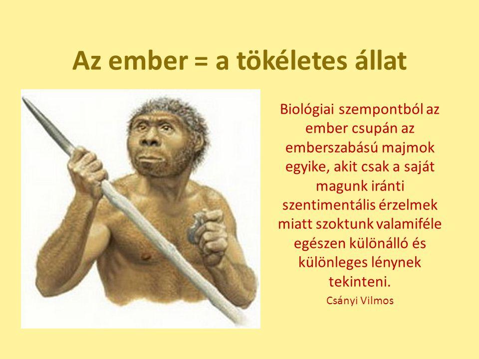 Az ember = a tökéletes állat Biológiai szempontból az ember csupán az emberszabású majmok egyike, akit csak a saját magunk iránti szentimentális érzel
