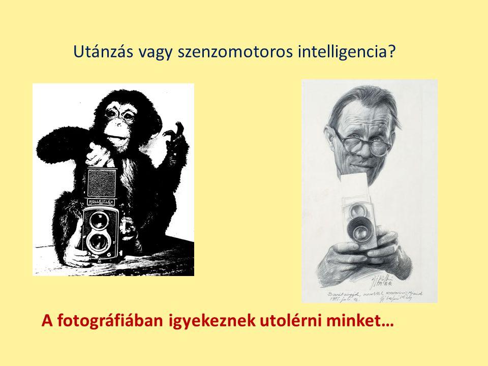 A fotográfiában igyekeznek utolérni minket… Utánzás vagy szenzomotoros intelligencia?